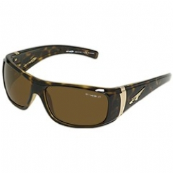 ARNETTE 4122 WANTED POLARIZED in color AN412208