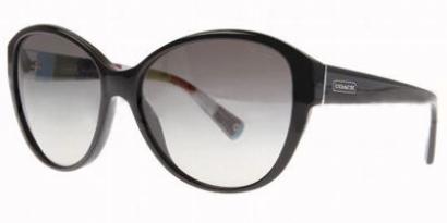 Coach Abigail Sunglasses  coach abigail hc8007 l011 sunglasses