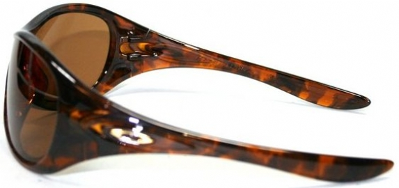 1e82f2cf45 Oakley Speechless Sunglasses