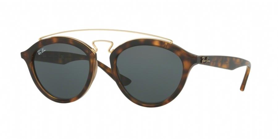 ray ban 3217  Ray Ban 4257f Sunglasses